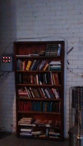Moon Dog bookcase door
